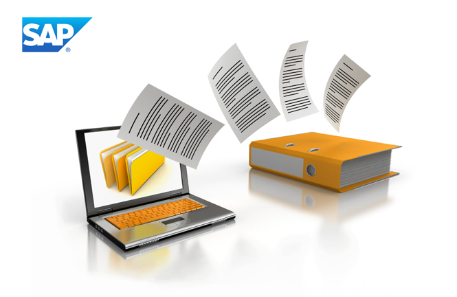 SAP : DMS, PARAMETRIZACIÓN Y REPORTING